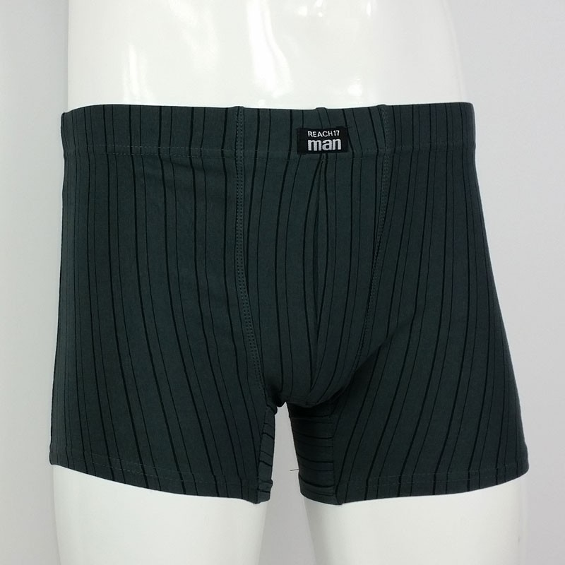 Men Cotton Stretch Trunk 4 Pack